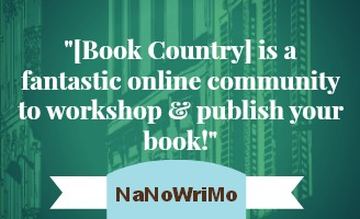 NaNoWriMo Praise for Book Country