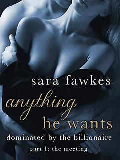 Erotic Romance Book - Anything He Wants: The Meeting